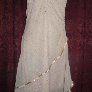 NWT Taboo Beautiful Prom, Wedding, Dress Size L